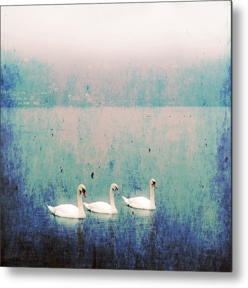 Swan Metal Print featuring the photograph Three Swans by Joana Kruse