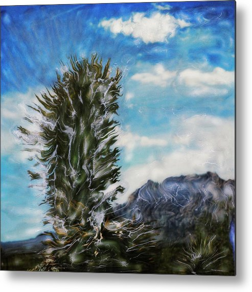 Paul Tokarski Metal Print featuring the photograph Yucca Glow by Paul Tokarski