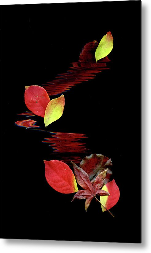 Abstract Art Metal Print featuring the photograph Falling Leaves by Gerlinde Keating - Galleria GK Keating Associates Inc