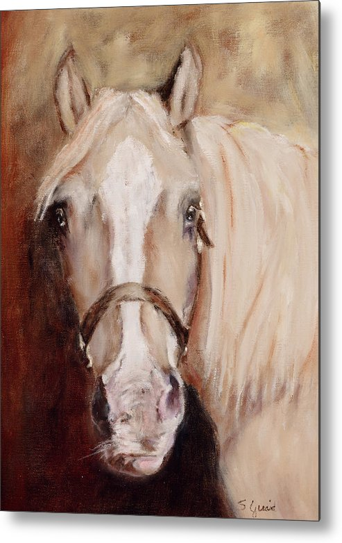 Horse Metal Print featuring the painting Banjo by Shirley Quaid