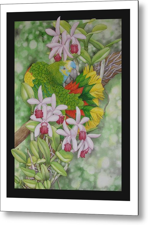 Orchids Metal Print featuring the painting Amazon 3 by Darren James Sturrock