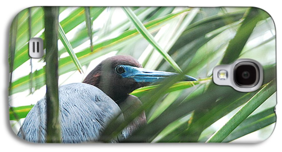 Wings Galaxy S4 Case featuring the photograph Under Her Watchful Eye by Margaret Fortunato