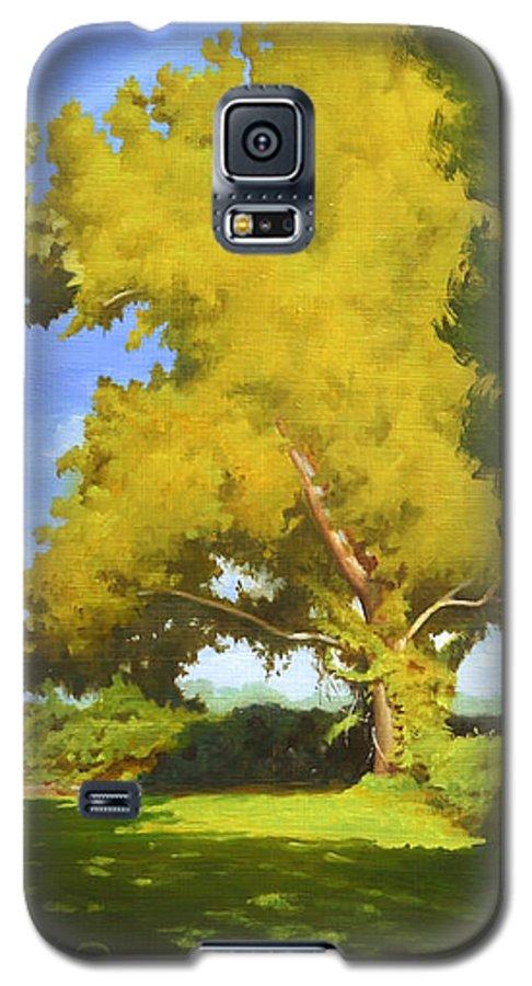 Sycamore Tree Galaxy S5 Case featuring the painting Sycamore by Gary Hernandez