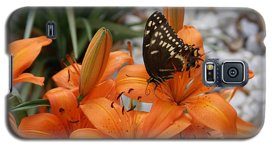 Easter Lilly Galaxy S5 Case featuring the painting The Descent by Debbie May