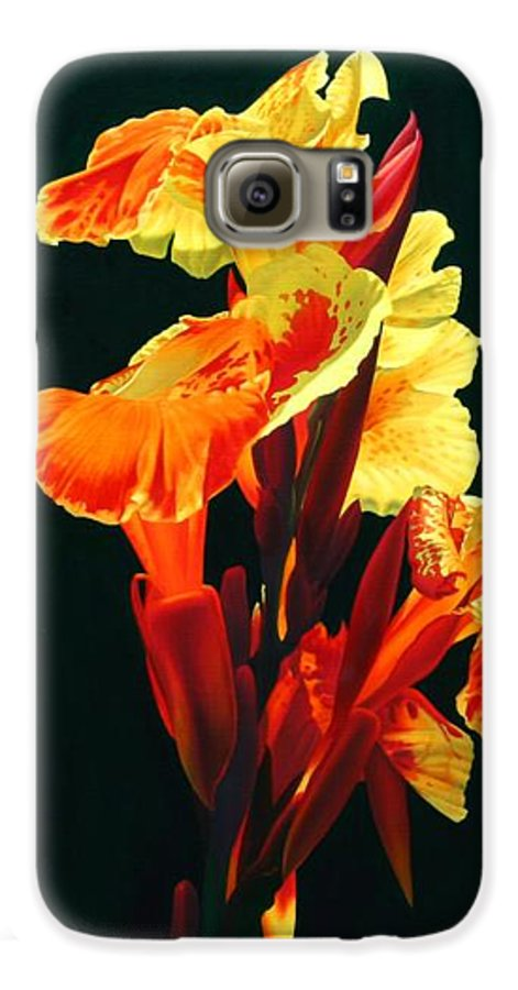 Flowers Galaxy S6 Case featuring the painting Yellow Cannas by Gary Hernandez