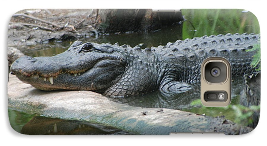 Florida Galaxy S7 Case featuring the photograph The Other Florida Gator by Margaret Fortunato