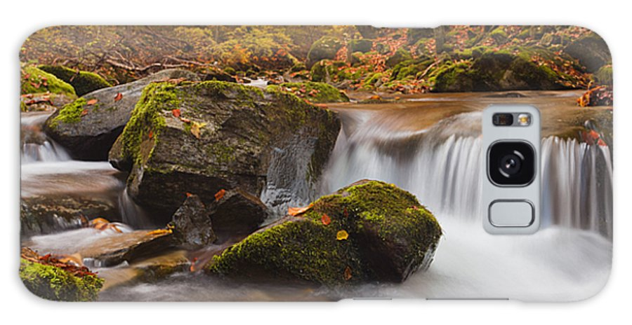 Mountain Galaxy S8 Case featuring the photograph Autumn Forest by Evgeni Dinev