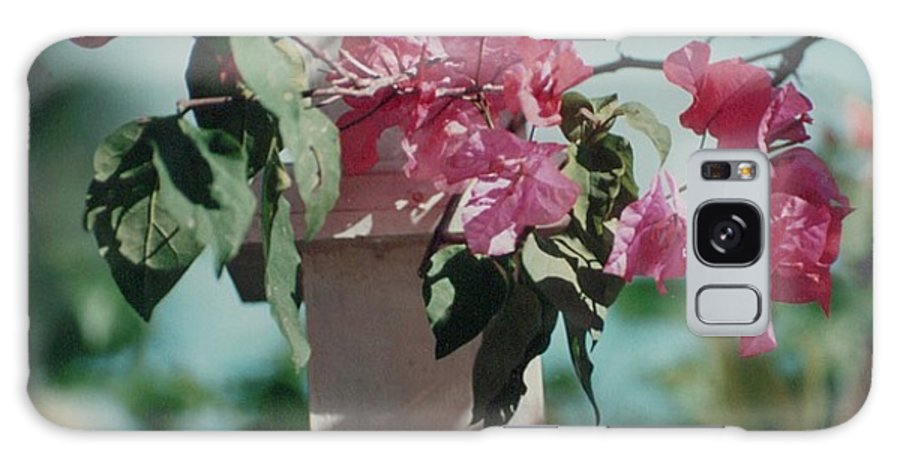 Charity Galaxy Case featuring the photograph Bouganvillea by Mary-Lee Sanders