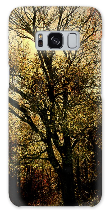 Woods Galaxy S8 Case featuring the photograph Deep Woods by Nina Fosdick