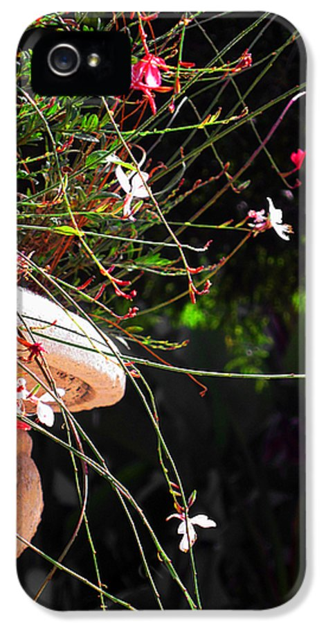Filigree IPhone 5 Case featuring the photograph Filigree-iii by Susanne Van Hulst