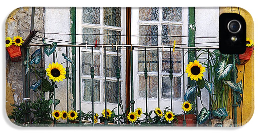 Address IPhone 5 Case featuring the photograph Sunflower Balcony by Carlos Caetano
