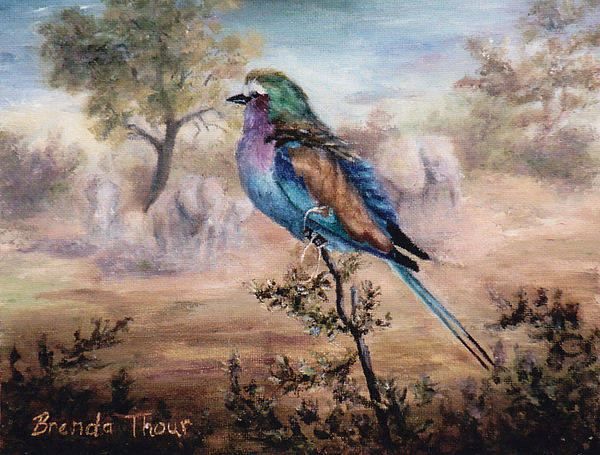 Bird Poster featuring the painting African Roller by Brenda Thour