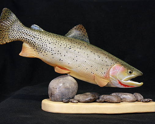 Salmon Poster featuring the sculpture Cutthroat Trout On The Rocks by Eric Knowlton