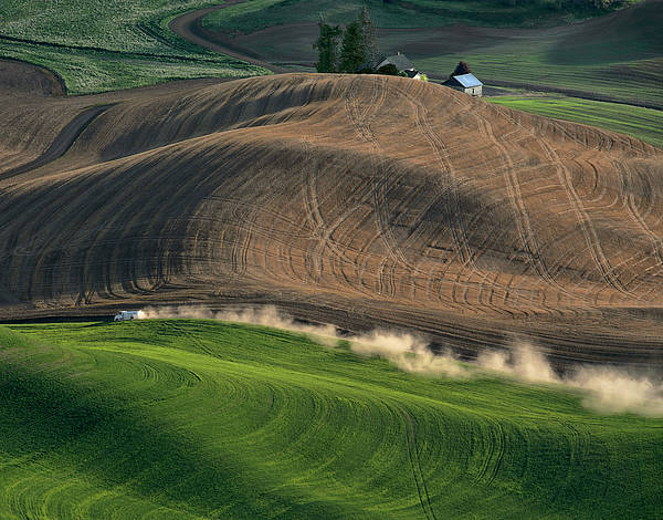 Palouse Poster featuring the photograph Heading Home For Dinner by Jerry McCollum