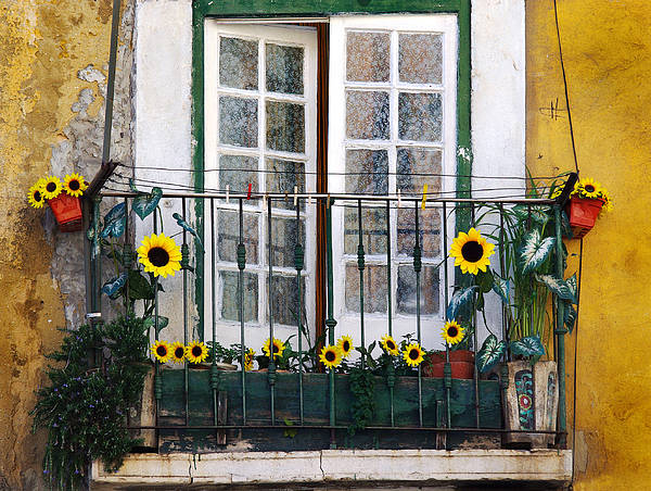 Address Poster featuring the photograph Sunflower Balcony by Carlos Caetano