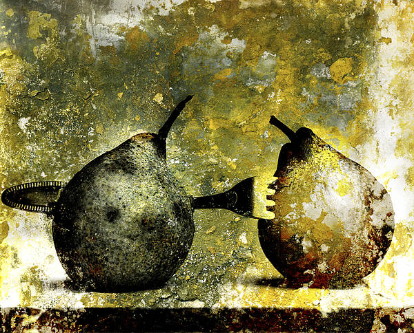 Aging Process Poster featuring the photograph Two Pears Pierced By A Fork. by Bernard Jaubert