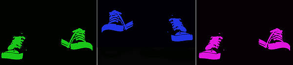 Sneakers Poster featuring the photograph Happy Feet by Lisa Knechtel