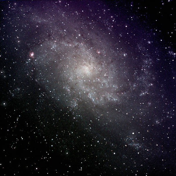 Square Poster featuring the photograph Triangulum Galaxy by A. V. Ley