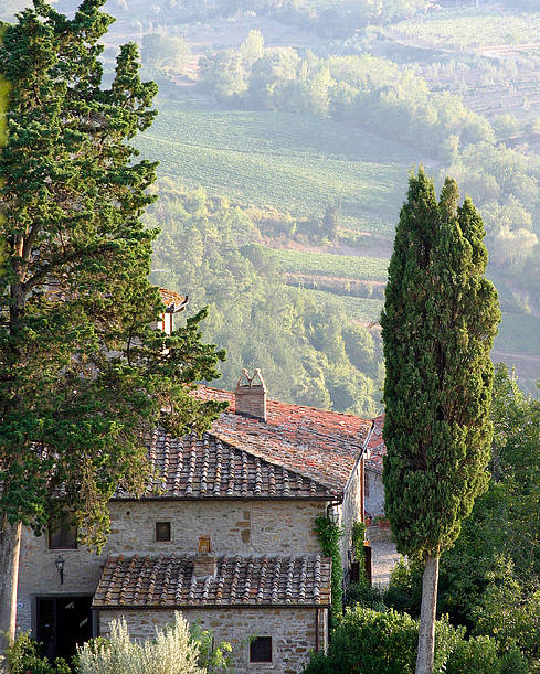 Italy Poster featuring the photograph Tuscan Farmhouse At Villa Vignamaggio by Mathew Lodge