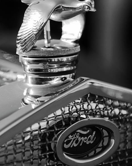 1930 Ford Quail Poster featuring the photograph 1930 Ford Quail Hood Ornament 3 by Jill Reger