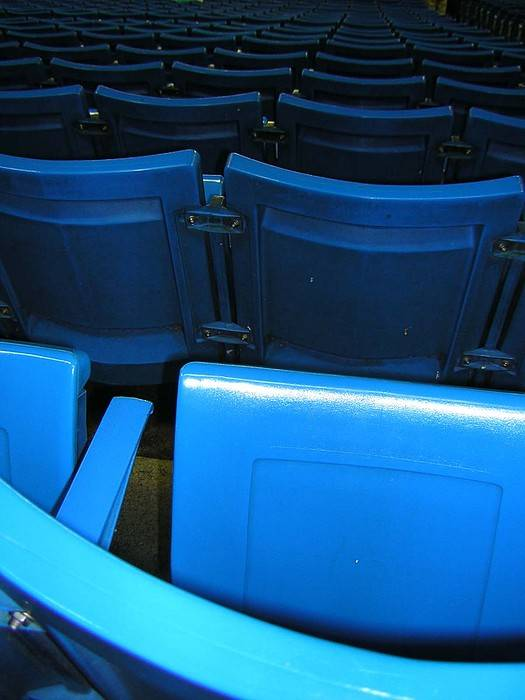 Blue Jays Poster featuring the photograph Blue Jay Seats by Heather Weikel