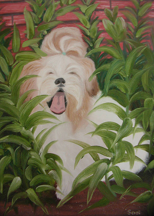 Dog Poster featuring the painting Pflower Nap by Sodi Griffin
