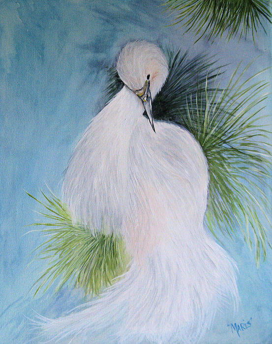 Birds Poster featuring the painting Snowy Egret by Maris Sherwood