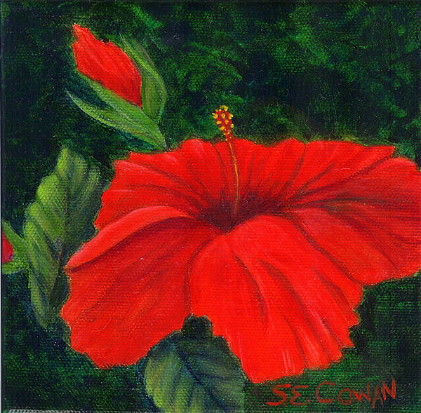 Floral Poster featuring the painting Red Hibiscus by SueEllen Cowan