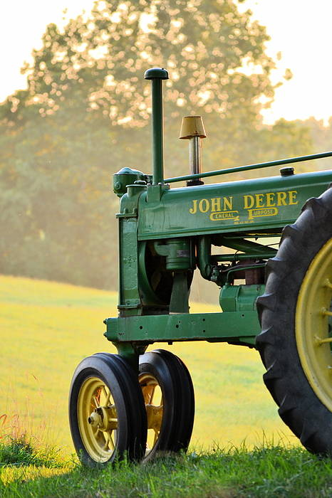John Deere Art Print featuring the photograph Resting by JD Grimes
