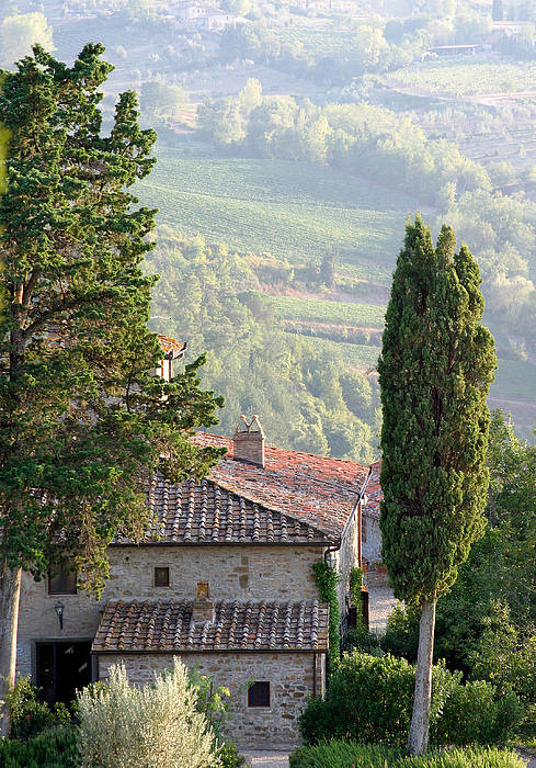 Italy Art Print featuring the photograph Tuscan Farmhouse At Villa Vignamaggio by Mathew Lodge