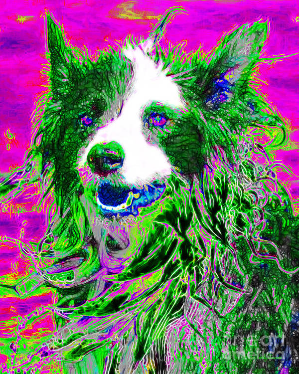 Animal Art Print featuring the photograph Sheep Dog 20130125v2 by Wingsdomain Art and Photography