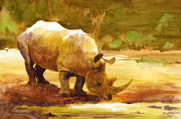 Watercolor Art Print featuring the painting Sunset Rhino by Brian Kesinger