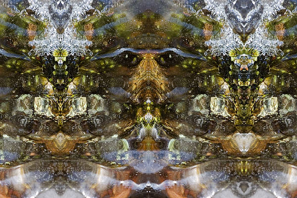 Ganesh Art Print featuring the photograph Ganesh by Shawn Young