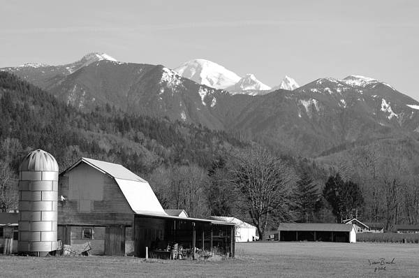 Black Art Print featuring the photograph Mt. Baker Wine Country by J D Banks