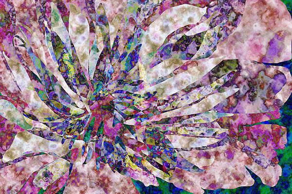 Flower Art Print featuring the digital art Peony Burst by Gae Helton