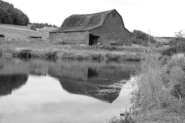 Barn Art Print featuring the photograph Reflection by Lisa Hebert