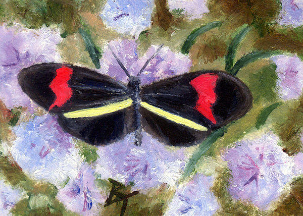 Butterfly Art Print featuring the painting Butterfly Aceo by Brenda Thour