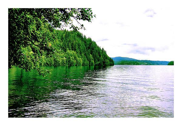 Lake Art Print featuring the photograph Green Lake by J D Banks