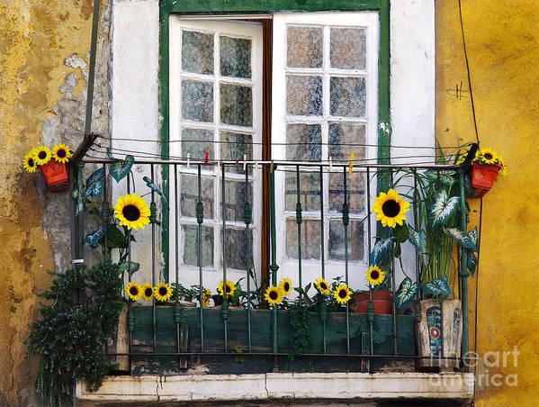 Address Art Print featuring the photograph Sunflower Balcony by Carlos Caetano
