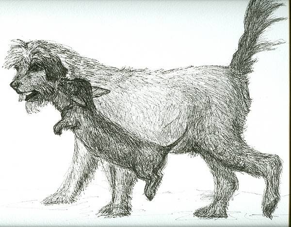 Dogs Art Print featuring the drawing Best Friends by Laura Johnson