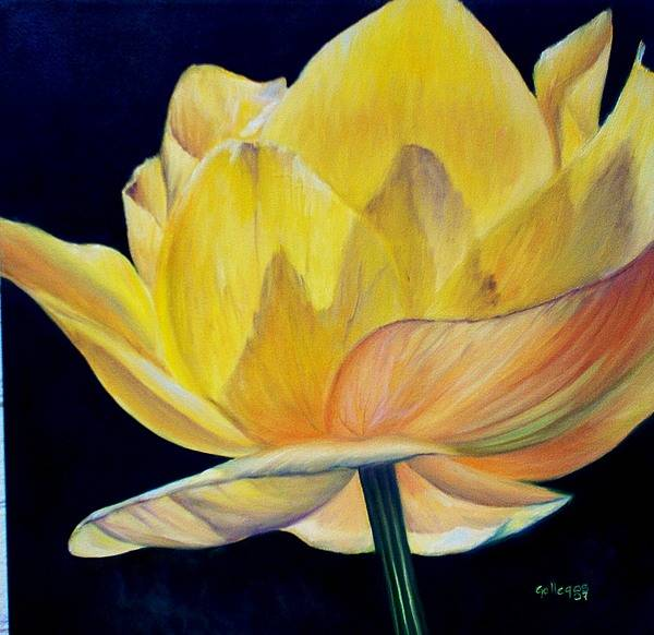 Flower Art Print featuring the painting Amarella by Elsa Gallegos