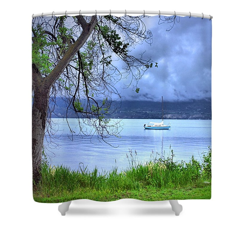 Tree Shower Curtain featuring the photograph Into The Blue by Tara Turner
