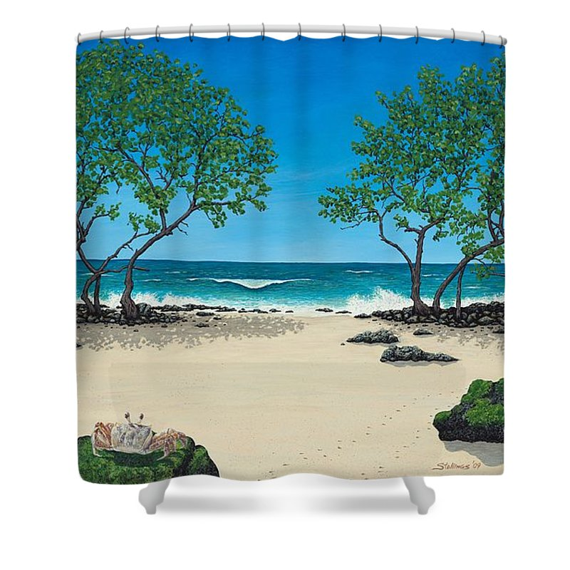 Ocean Shower Curtain featuring the painting Where Is My Corona by Shawn Stallings