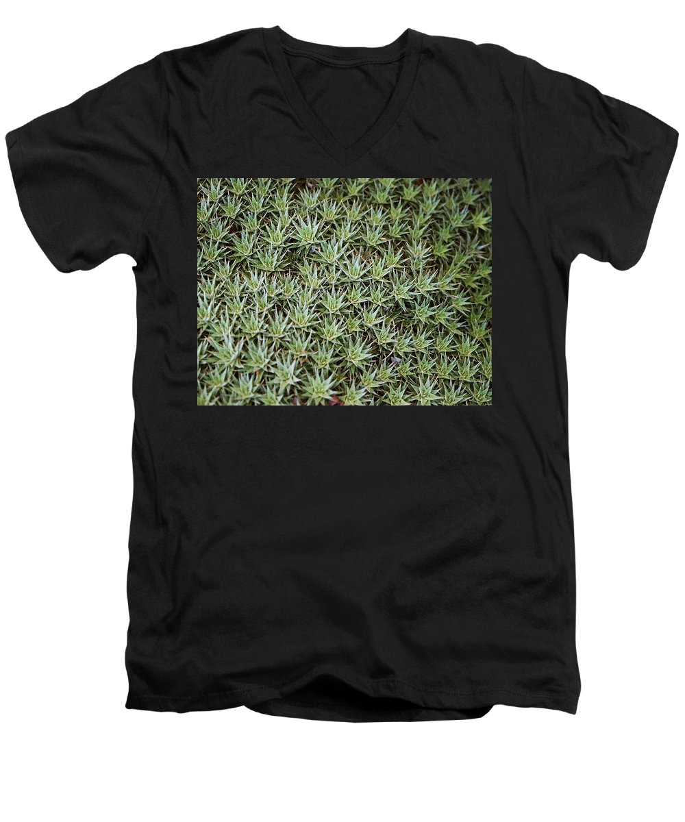 Cactus Men's V-Neck T-Shirt featuring the photograph Feild Of Stars by Dean Triolo