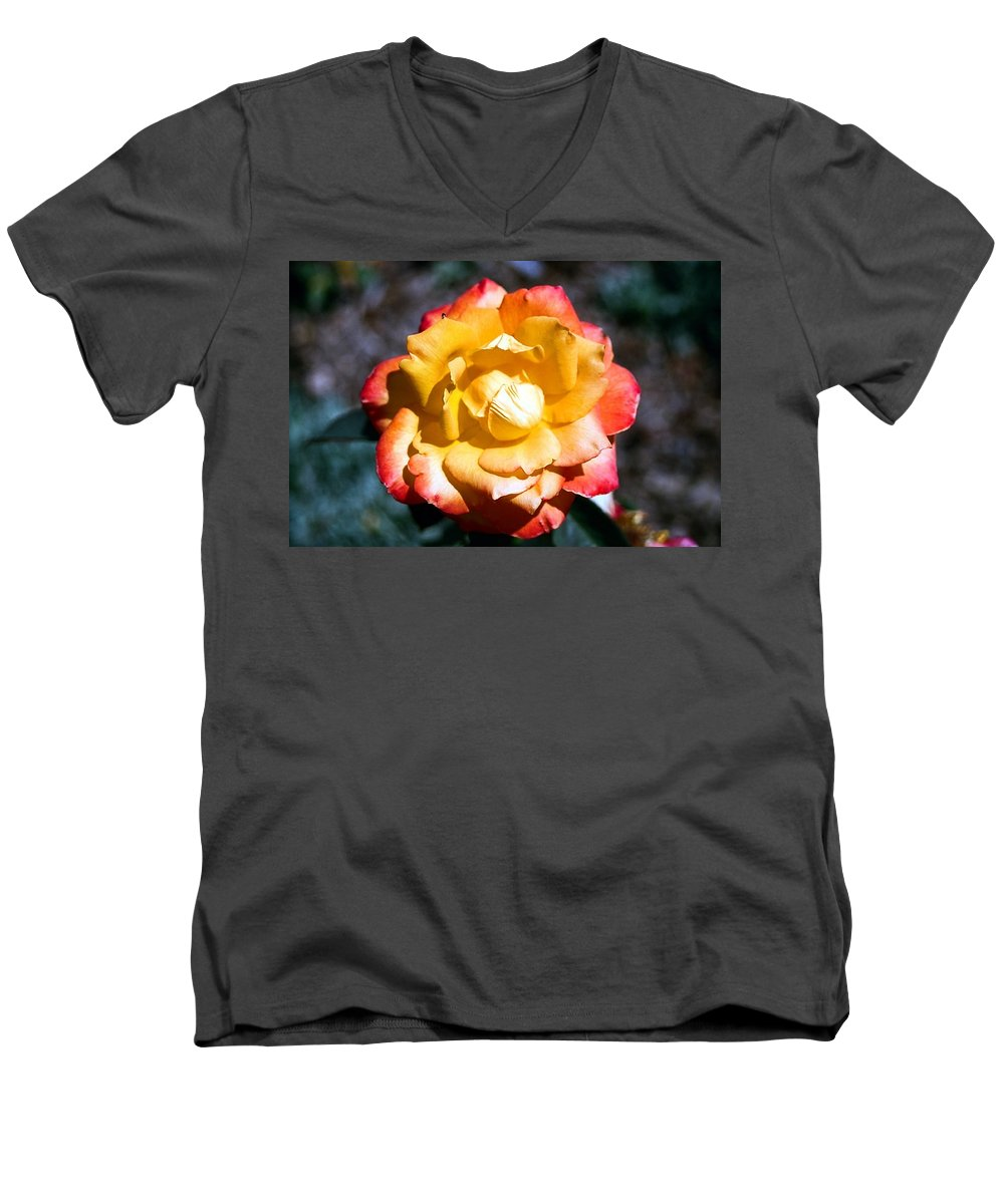 Rose Men's V-Neck T-Shirt featuring the photograph Red Tipped Yellow Rose by Dean Triolo
