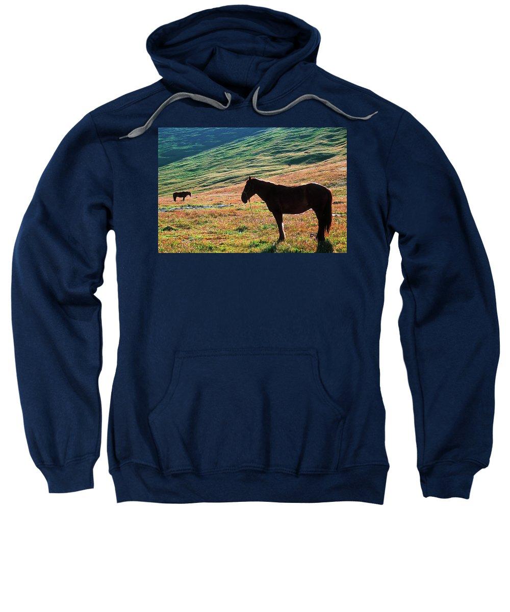 Alone Sweatshirt featuring the photograph Altay by Konstantin Dikovsky