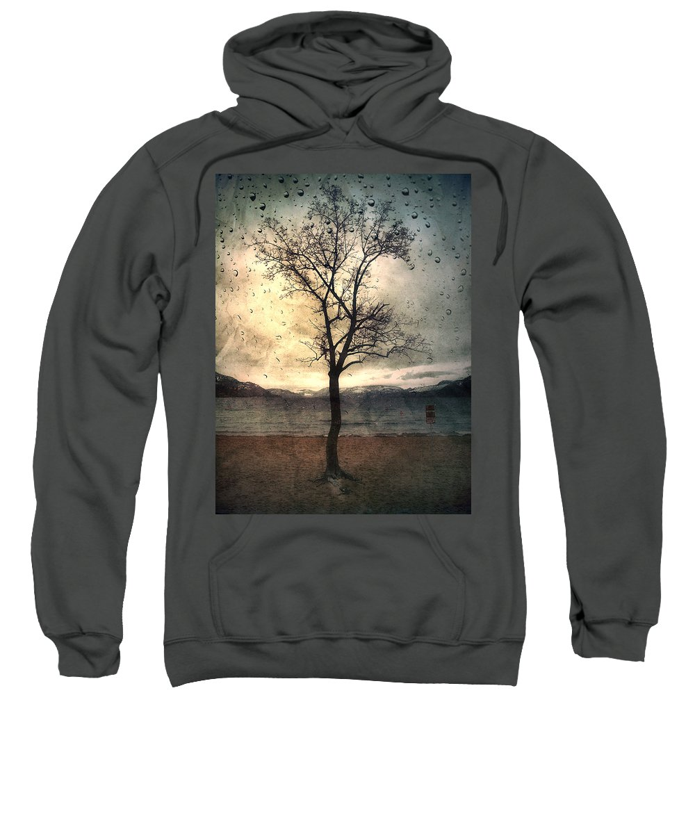 Rain Sweatshirt featuring the photograph January 12 2010 by Tara Turner