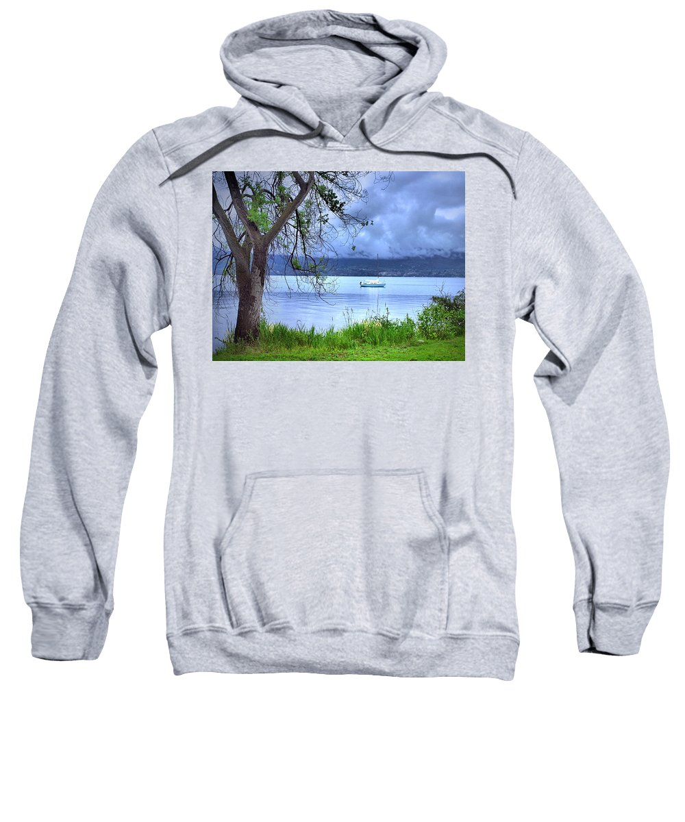 Tree Sweatshirt featuring the photograph Into The Blue by Tara Turner