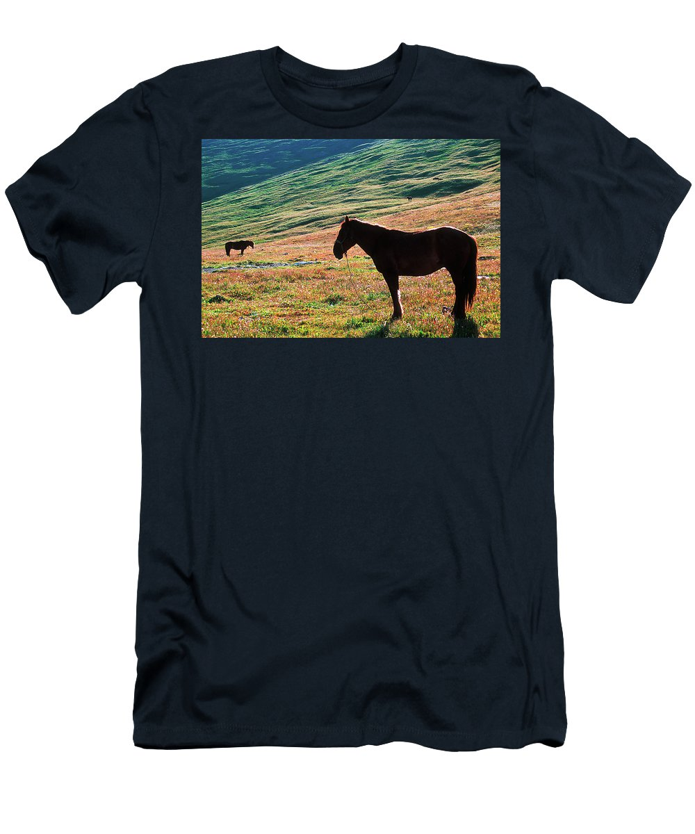 Alone Men's T-Shirt (Athletic Fit) featuring the photograph Altay by Konstantin Dikovsky