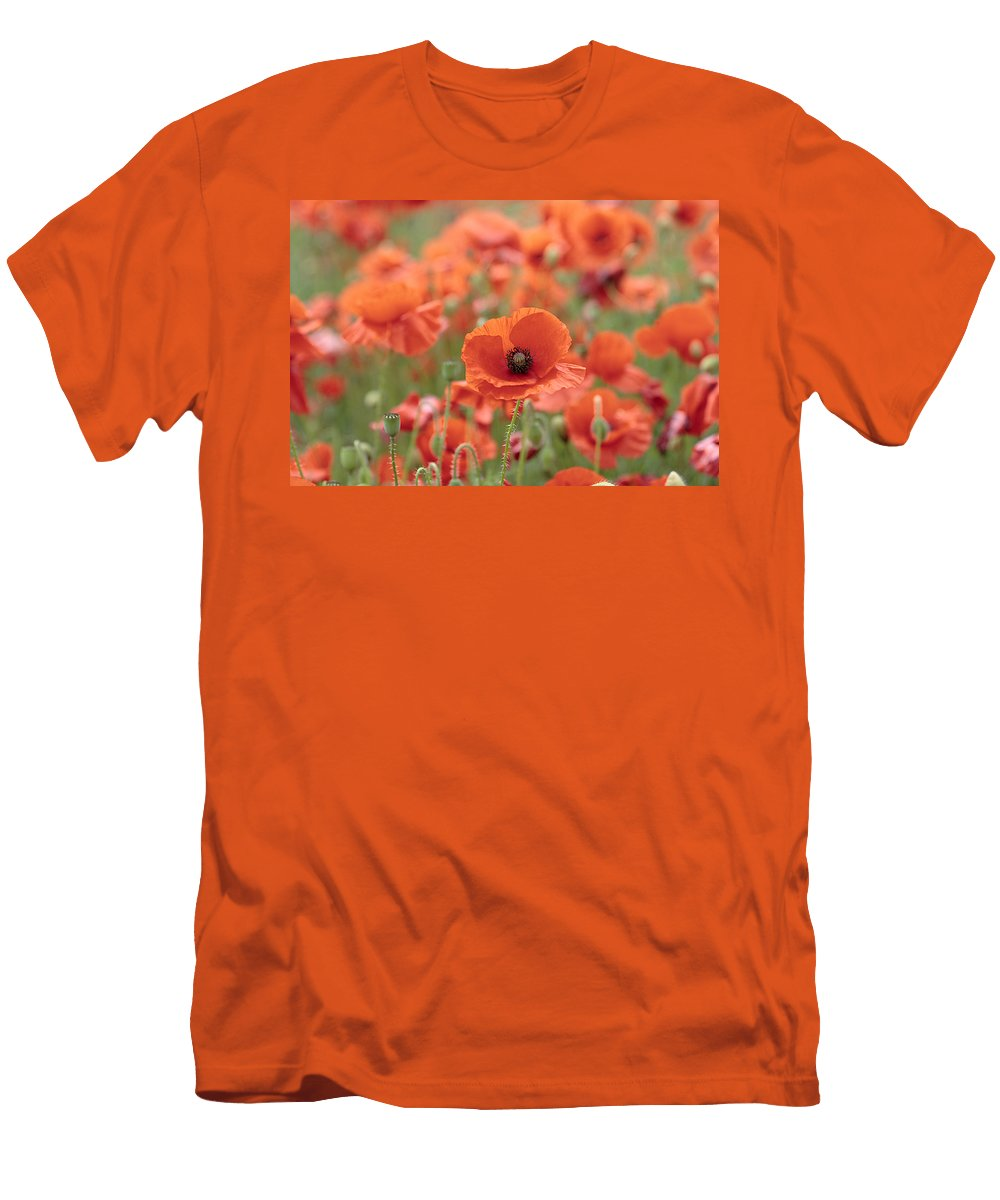 Poppy Men's T-Shirt (Athletic Fit) featuring the photograph Poppies H by Phil Crean